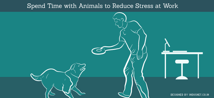 Spend Time with Animals to Reduce Stress at Work